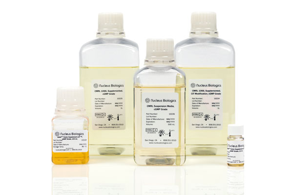 Nucleus Biologics Develops cGMP CMRL Media and zIF™ Xeno-Free Supplement for Robust Human Islet Cell Culture